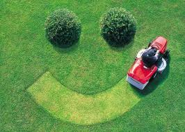 Here are a Few Best Practices to Implement When Marketing Your Lawn Care or Landscaping Business:
