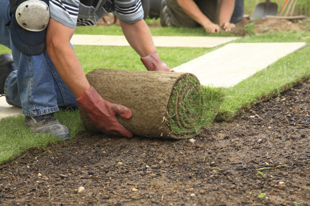 Lawn and Landscaping Business