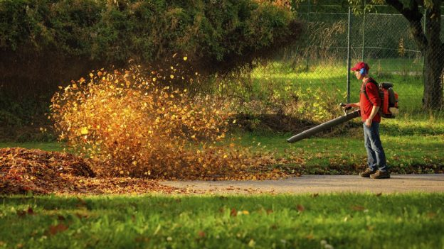 What To Know Before Buying Leaf Blowers